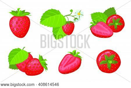 Fresh Ripe Strawberry Set. Whole And Sliced Juicy Red Summer Berries With Leaves Isolated On White.