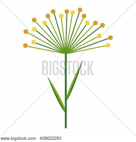 Umbrella Of Dill Or Cereal Plant. Simple Minimalistic Bright Green Branch With Leaves And Yellow Flo