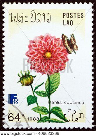 Laos - Circa 1988: A Stamp Printed In Laos Shows Red Dahlia, Dahlia Coccinea, Flowering Plant, Circa