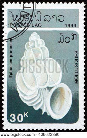 Laos - Circa 1993: A Stamp Printed In Laos Shows Epitonium Pretiosum, Is A Species Of Small Predator