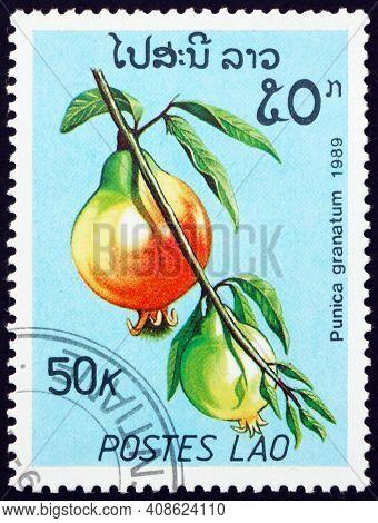 Laos - Circa 1989: A Stamp Printed In Laos Shows Pomegranate (punica Granatum), Edible Fruit Produce