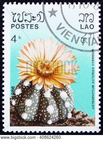 Laos - Circa 1986: A Stamp Printed In Laos Shows Sand Dollar Cactus (astrophytum Asterias Hybridum),