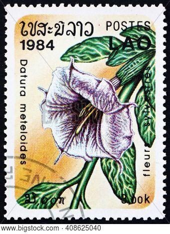 Laos - Circa 1984: A Stamp Printed In Laos Shows Pricklyburr, Datura Meteloides, Flowering Plant Nat