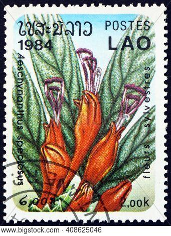 Laos - Circa 1984: A Stamp Printed In Laos Shows Basket Plant, Aeschynanthus Speciosus, Flowering Pl