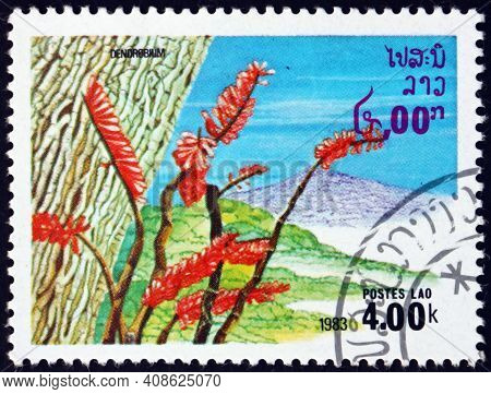 Laos - Circa 1983: A Stamp Printed In Laos Shows Dendrobium, A Genus Of Mostly Epiphytic And Lithoph