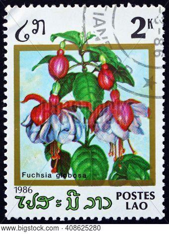 Laos - Circa 1986: A Stamp Printed In Laos Shows Fuchsia, Fuchsia Globosa, Is A Flowering Plant, Cir