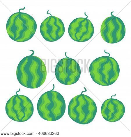 Whole Watermelons Cartoon Set Stock Vector Illustration. Striped Hand Drawn Ripe Watermelon Fruits I
