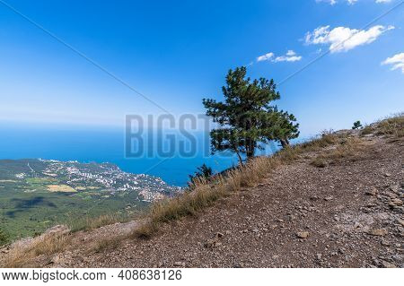 Natural Landscape With Pine And Rock On Ah-petri Mountain In Crimea