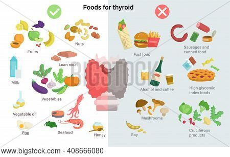 A Set Of Useful And Harmful Products For The Thyroid Gland. Thyroid Gland On The Larynx And Trachea