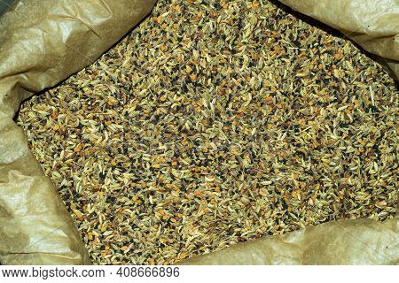 Paanch Phoron Or Odia Or Pancha Phutana, Maithili Padkaune Masala, That Made Black Mustard Seed, Fen