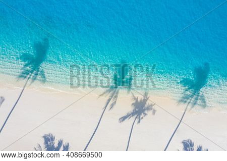 Top View Aerial Drone Shot Of Beautiful White Sand Beach With Green Coconut Trees Leaves Shadows And