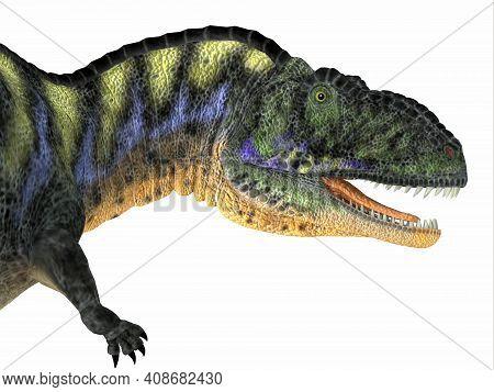 Aucasaurus Dinosaur Head 3d Illustration - Aucasaurus Was A Carnivorous Theropod Dinosaur That Lived