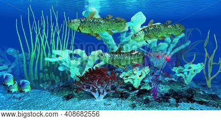 Coelacanth Fish Reef 3d Illustration - Indian Redfin Butterflyfish Watch As A Group Of Coelacanth Fi