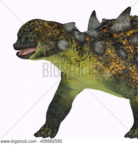 Euoplocephalus Dinosaur Head 3d Illustration - The Ankylosaurid Euoplocephalus Was A Herbivorous Din