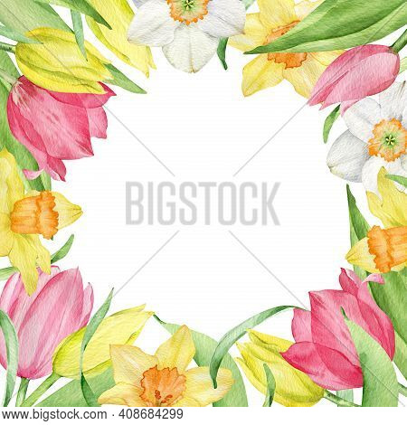 Watercolor Square Frame Of First Spring Flowers Isolated On The White Background. Yellow And Pink Tu
