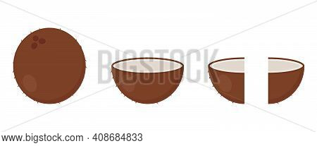 Coconut Icon In Cartoon Style. Whole, Half And Fourth Part Of Coconut. Tropical Fruit. Vector