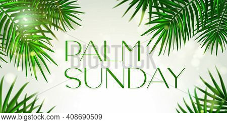 Palm Sunday - Greeting Banner Template For Christian Holiday, With Palm Tree Leaves Background. Cong