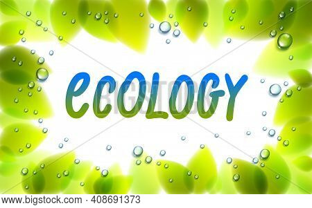 Ecology Word Drawn On A Window, Fresh Green Leaves And Water Rain Drops Or Condensate Macro, Vector