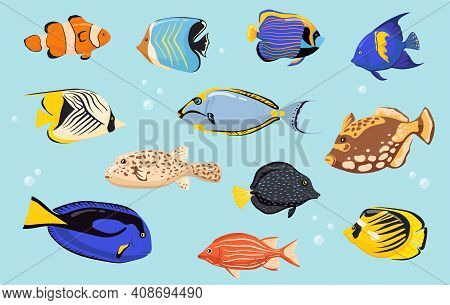 Colorful Tropical Fishes Flat Set For Web Design. Cartoon Coral Reef Animals For Aquarium Isolated V
