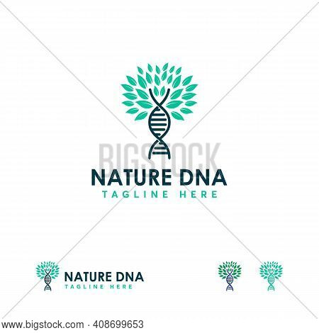 Design Medical Dna Helix Logo Template, Nature Dna Logo Template