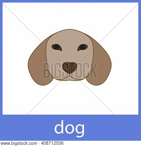 Dog. Pets, Domestic Animals. English Vocabulary Word Card.