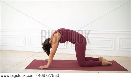The Girl Shows Pilates Exercises. Fit Young Brunette Pilates Instructor Showing Different Exercises.