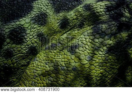 Detail Of Green Scaly Leather With Black Maps. Material For The Production Of Leather Goods - Belts,