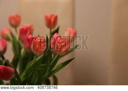 Beautiful Red Tulips On A Blurred Brown Background