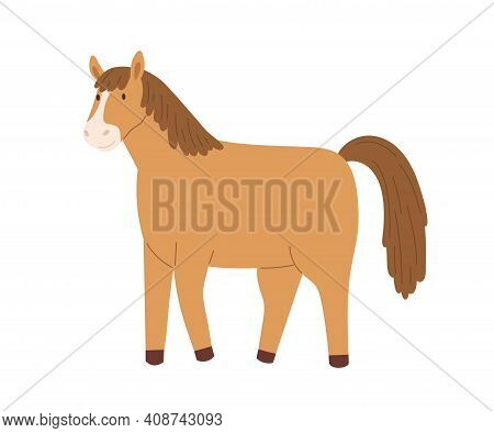 Cute Brown Horse Isolated On White Background. Smiling Little Pony. Funny Childish Character. Colore