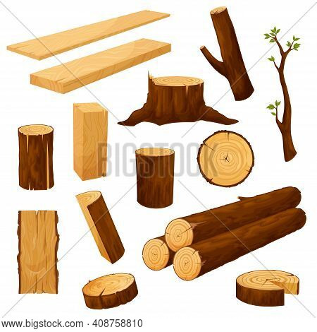 Tree Stump, Timber Materials And Wooden Logs. Wooden Plank, Beam And Billet, Tree Branch With Leaves