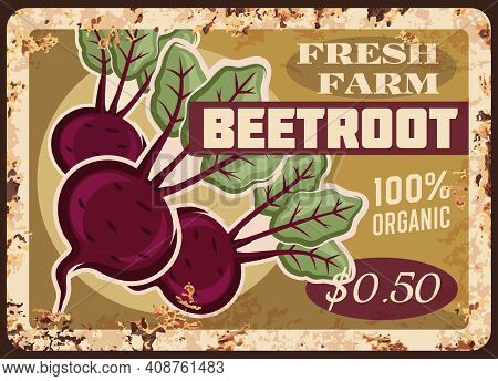 Beetroot Metal Plate Rusty, Beet Root Vegetables, Vector Retro Poster. Farm Market Food Price Menu F