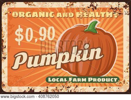 Pumpkin Metal Plate Rusty, Farm Vegetables Poster Retro, Vector Food Market Price Menu. Pumpkin Harv