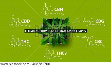 Chemical Formulas Of Natural Cannabinoids, Green Poster With Chemical Formulas Of Cannabinoids And P
