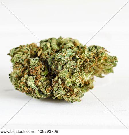 Cannabis Sativa. Medical Cannabis. Legalization Of Medical Cannabis. Drugs.