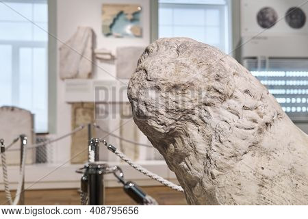 Sevastopol, Crimea - January 31, 2021: Head Of A Destroyed Antique Lion Statue In The Exposition Of