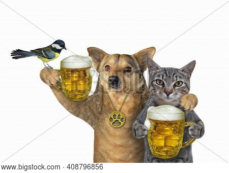 A Gray Cat With A Beige Dog Drink Beer Together. White Background. Isolated.
