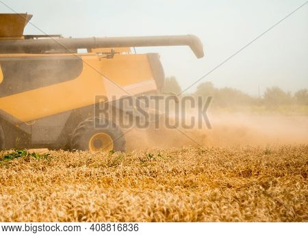 Wheat Harvesting On Field In Summer Season. Wide Chaff Spreading By Combine Harvester With Rotor Sep