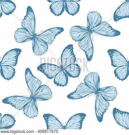 Seamless Pattern With Hand Drawn Pastel Menelaus Blue Morpho, Blue Morpho Stock Illustration