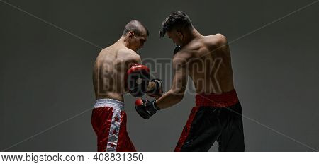 Sportive Males Fighting Wearing Boxing Gloves On Gray Studio Backdrop With Copy Space, Mixed Fight W