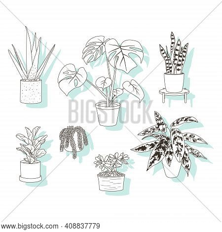 Set Of Stickers Or Icons, Trendy House Plants In Pots, Aloe Vera, Fiddle Leaf Fig, Snake Plant, Mons