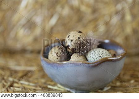 Quail Eggs And Feathers In A Gray Ceramic Cup On A Hay Background.farm Products . Organic Natural Qu
