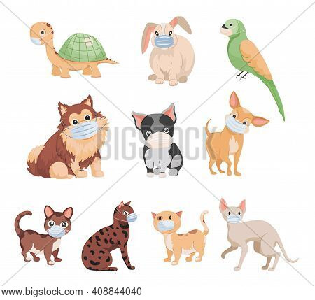 Set Of Cute Little Domestic Pets In Medical Masks Vector Flat Illustration Isolated On White Backgro