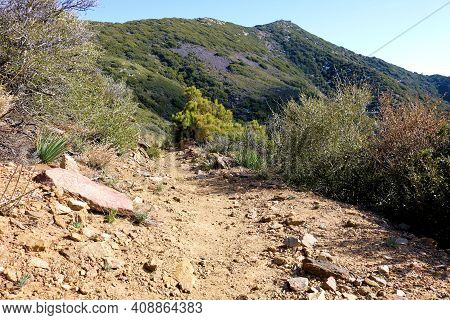 Hiking Trail Surrounded By Chaparral Plants On Arid Badlands Taken At A Mountainous Slope In The Rur