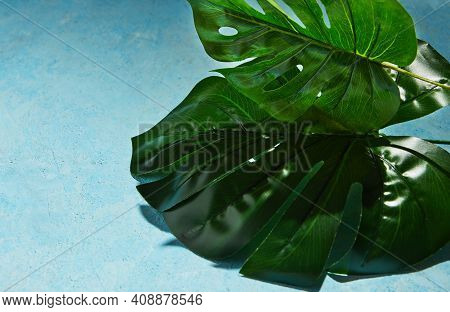 Background Texture In Blue With Monstera Leaf And Hard Shadow From Monstera.