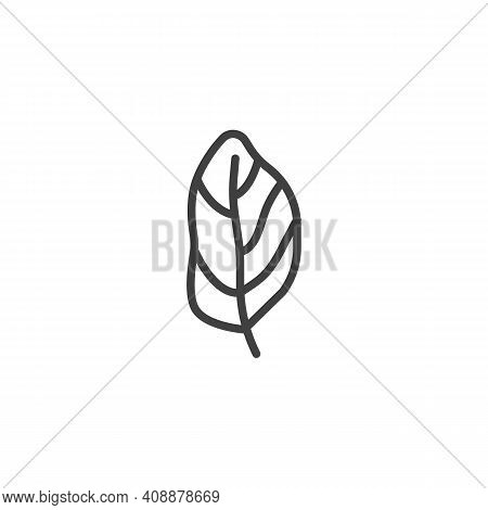Basil Leaf Line Icon. Linear Style Sign For Mobile Concept And Web Design. Basil Herb Outline Vector