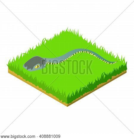 Cartoon Snake Icon. Isometric Illustration Of Cartoon Snake Vector Icon For Web