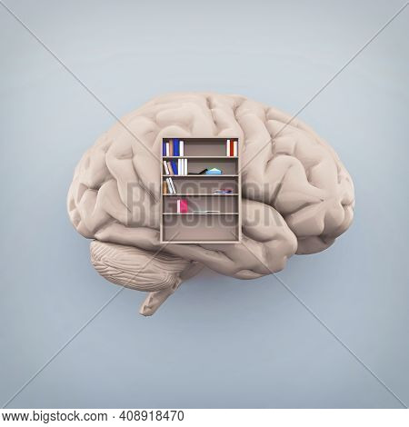 Human Brain With A Library Inside And Books. Knowledge And Self Development Concept . This Is A 3d R