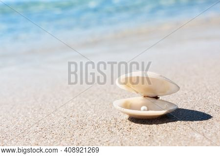 Sea Shell With Pink Pearl On The Sandy Beach. Open Sea Shell With A Pearl Inside. Summer Beach Conce