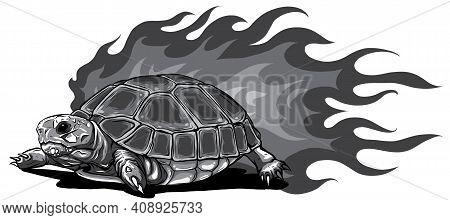 Monochromatic Turtle Isolated On White Background Vector Illustration