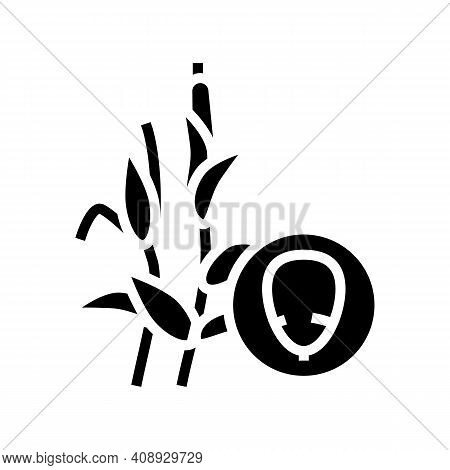 Corn Groat Glyph Icon Vector. Corn Groat Sign. Isolated Contour Symbol Black Illustration